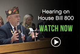 Watch the House Bill 800 Hearing